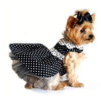 Black and White Polka Dot Dog Dress with Matching Leash - XSm-LG