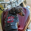 Born To Ride Motorcycle Dog Harness Jacket-Size 3-90#