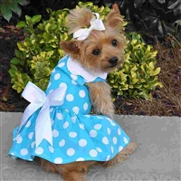 Blue Polka Dot Dog Dress with Matching Leash X-Sm-Large