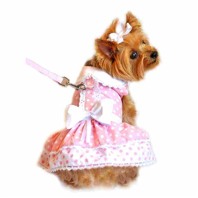 Creamy Pink Polka Dot and Lace Dog Dress Set with Leash - Xsm-Lg