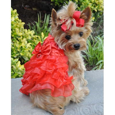 Holiday Dog Harness Dress - Red Satin XSm-Lg
