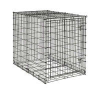 Dog Crate Midwest Big 54""