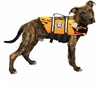 Paws Aboard Racing Flames Life Jacket