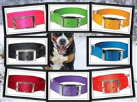 Bravo Double Thick Nylon Dog Collar