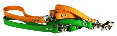 Signature Swivel 6' Dog Leads with a Swivel