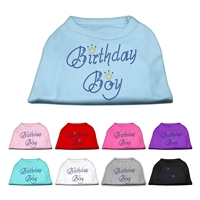 Birthday Boy Rhinestone T Shirts