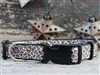Leaping Leopard Sport Buckle Dog Collar by Diva Dog