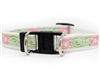 Maui Dog Collar-Safety Buckle