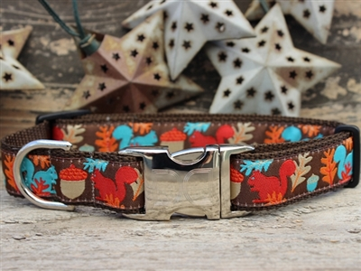 Squirrel! Dog Collar by Diva Dog