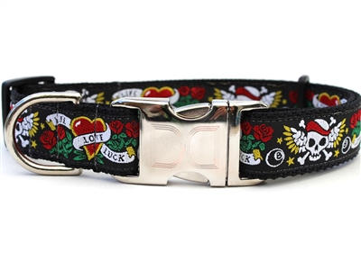 Wild One Buckle Dog Collar