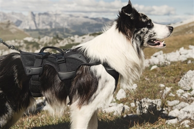 Hurtta Adjustable Trail Harness Dog Backpack